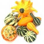 Pumpkins 2 — Stock Photo