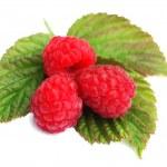 Raspberry 6 — Stock Photo