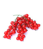 Red currants 1 — Stock Photo