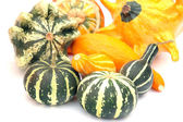 Pumpkins 4 — Stock Photo