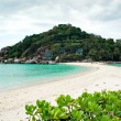 Koh Nang Yuan — Stock Photo #2269575