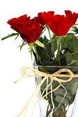 Rote rosen 2 — Stockfoto