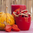Fall decoration — Stock Photo #2230469
