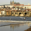 Prague castle and Charles bridge - Stock Photo