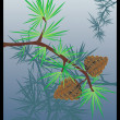 Pine - Stock Vector
