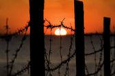 Zachód słońca przez płot — Zdjęcie stockowe