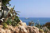 Cote d'Azur scenic — Stock Photo