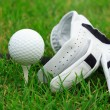 Royalty-Free Stock Photo: Golf