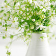 Forest flowers — Stock Photo