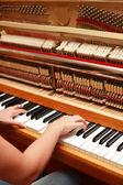 Mani a suonare il pianoforte — Foto Stock