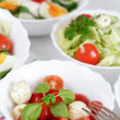 Small salads — Stock fotografie #2279868