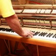 Stock Photo: Piano tuner
