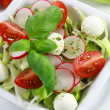 Vegetable salad — Stock Photo #2334309