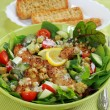 Green salad with chicken stripes - Stock Photo