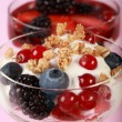 Healthy yogurts - Stock Photo