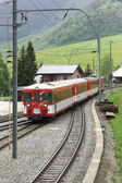 Train passing a village — Stockfoto