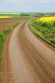 Dirt road among fields — Stock Photo