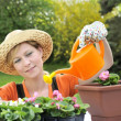 Young woman watering flowers — Stock Photo #2185694