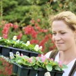 Woman with container-grown plants — Stock Photo #2228603