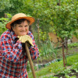 Foto Stock: Senior woman gardening