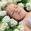 Little girl laying in flowers - snowball — Stock Photo #2279803