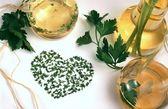 Vinegar, oil and herbs — Stock Photo
