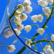 Lily of the valley - detail - Stock Photo