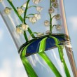 lily of the valley - detail — Stock Photo