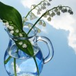 Lily of the valley in jug — Stock Photo
