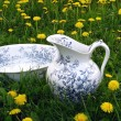 Stock Photo: Classic wash basin and jug in meadow