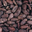 Cocoa beans - background - Stock Photo