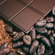 Bar of chocolate, cocoa beans, powder — Stock Photo