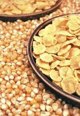 Corn seeds and corn flakes — Stock Photo