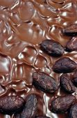 Chocolate icing with cocoa beans — Stock Photo