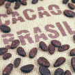 Cocoa beans and hessian — Stock Photo