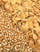 Corn seeds and corn-flakes — Stock Photo