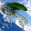 Stock Photo: Lily of the valley in glass