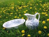 Classic wash basin and jug in meadow — Stock Photo