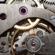 图库照片: Clock inside macro background