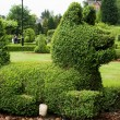 Dog bush — Stock Photo #2502430