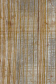Old papyrus macro texture — Stock Photo