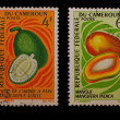 Stock Photo: Post stamps of Cameroon