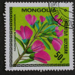 Mongolian post stamp - Stock Photo