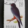 Polish post stamp - Stock Photo