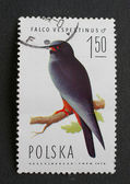 Polish post stamp — Stock Photo