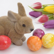 Easter eggs — Stock Photo #2237120