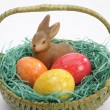 Easter nest — Stock Photo #2373731
