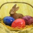 Easter nest — Stock Photo