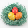 Easter nest — Stock Photo #2373803
