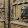 Lion head on wooden door — Stock Photo